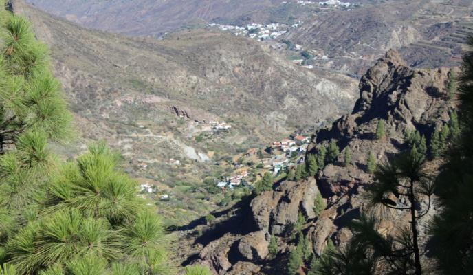 Hiking Tour - Roque Nublo