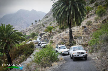 La Gomera Jeep Safari